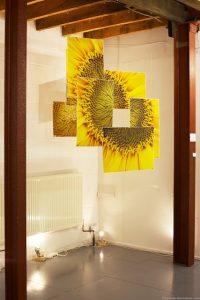 Sunflower installation - Denise Swanson