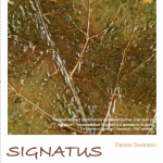 Signatus: new installation opens Oct 3rd
